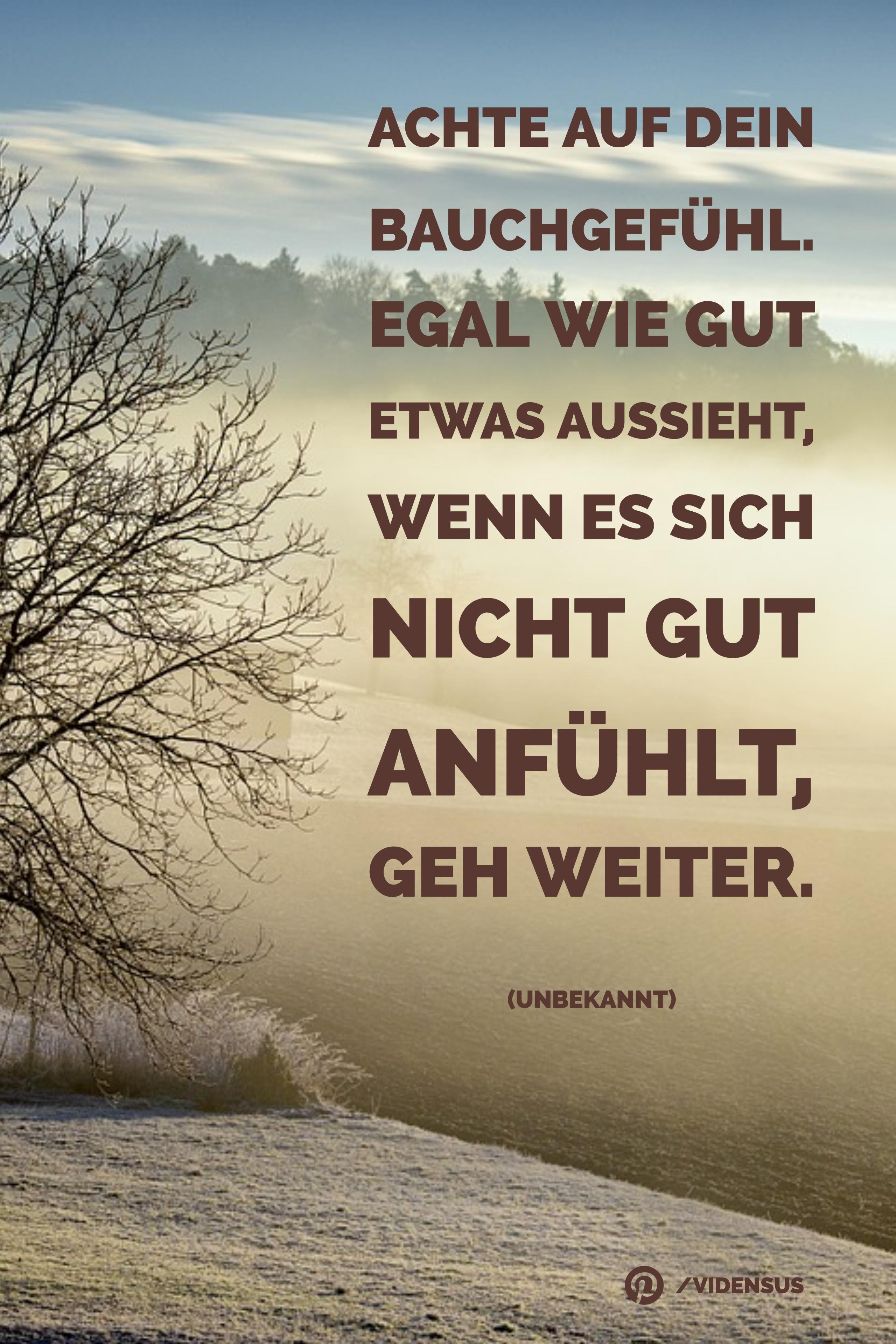 zitate #sprüche #weisheiten #bauchgefühl | Zitate | Quotes, Love