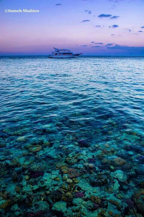 Sharm Elsheikh , Egypt