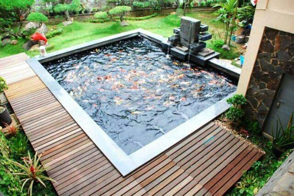 Image result for modern koi pond farms in 2019 fish for Contemporary koi pond design