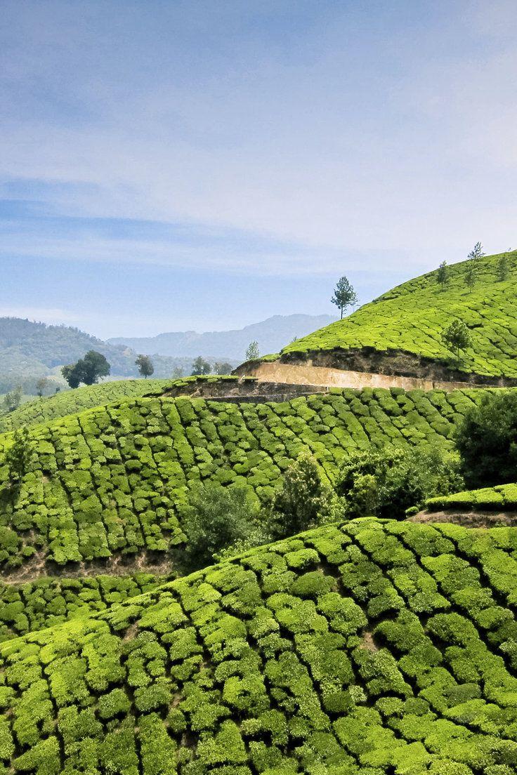 Wanderlists Best of September India tour, Visit japan