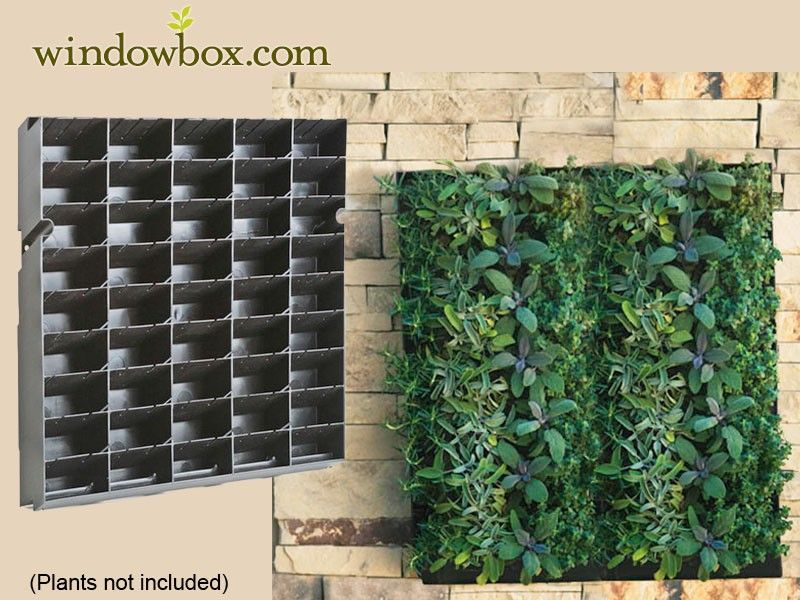 Large Living Wall Planter 20 W X H Diy Projects Vertical Garden Kits Systems Pots Planters Windowbox
