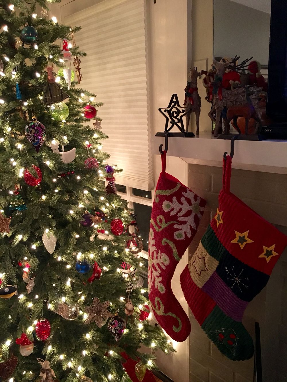 Christmas at the Speer Kalinosky house 2015