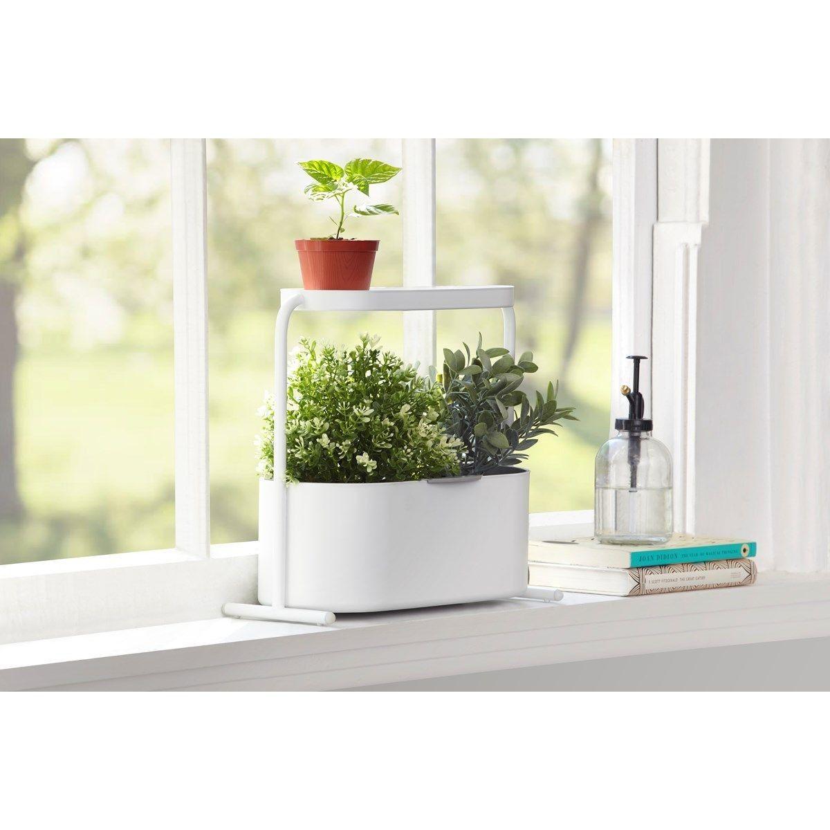Plantes Aromatiques En Jardinière jardinière d'herbes aromatiques - taille : tu | jardiniere