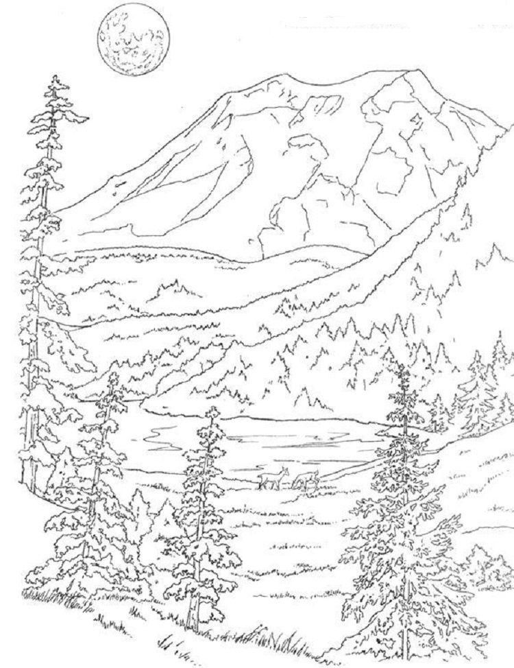 Woods Landscape Coloring Pages Desenhos Paisagens Riscos Para