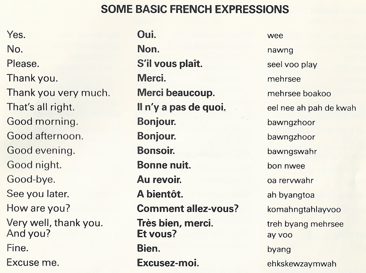 Basic french expressions | my.france.french.dream | Pinterest ...