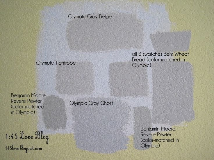 Pewter Grey Wall Paint Paint Wall Swatches Olympic Gray