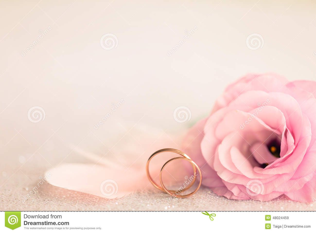 Wedding Background With Gold Rings, Gentle Flower And Light Pin ...