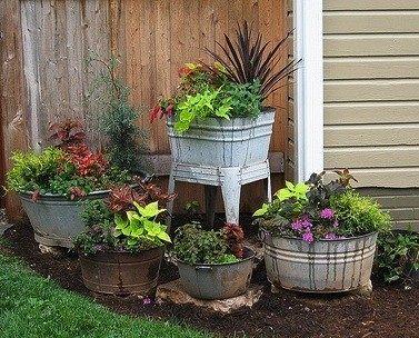 Washtub Gardening Washtubs Outdoor Gardens Garden Inspiration Rustic Gardens