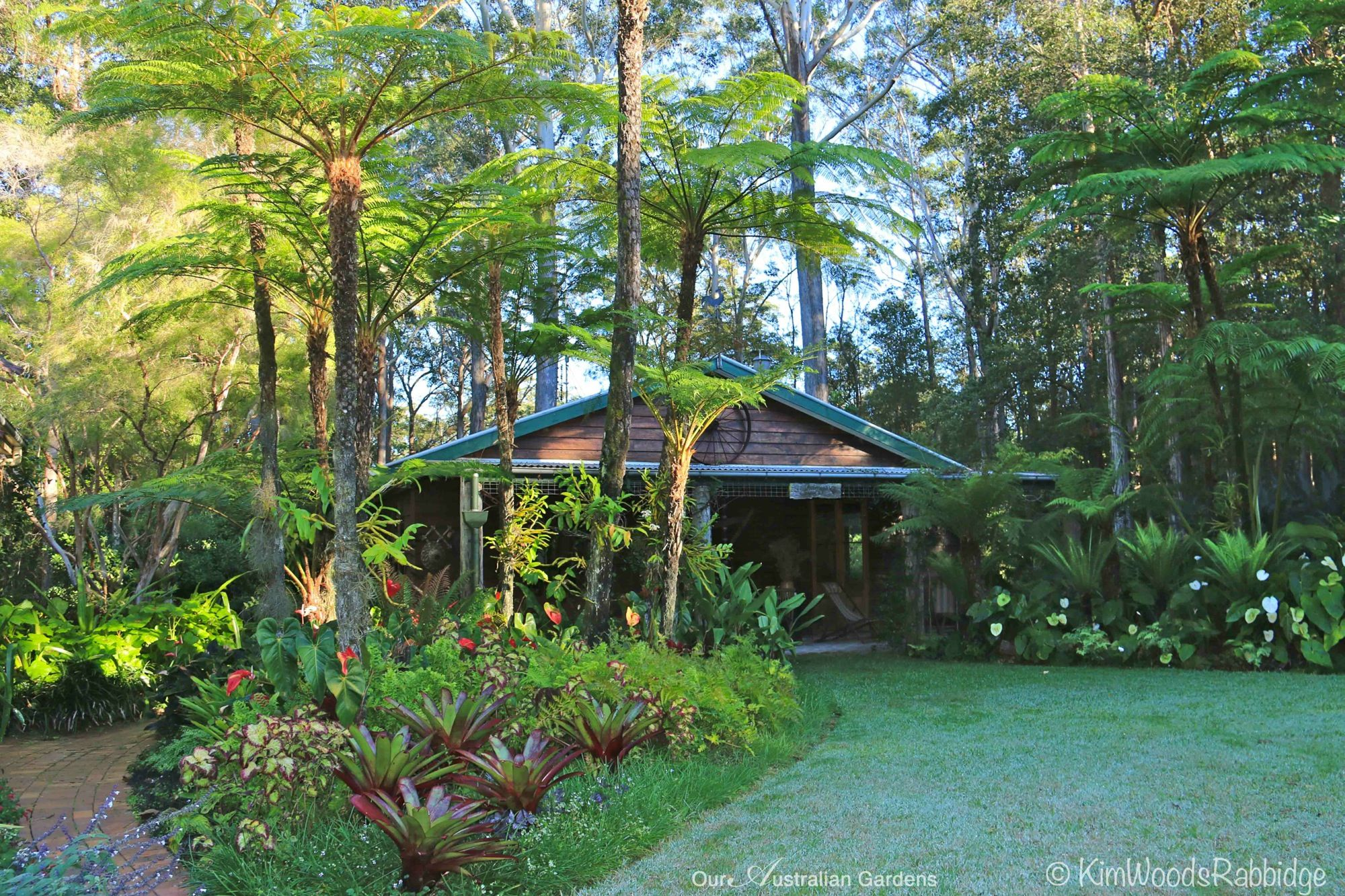 56stringybarkc2a9kimwoodsrabbidge-our-australian-gardens ...