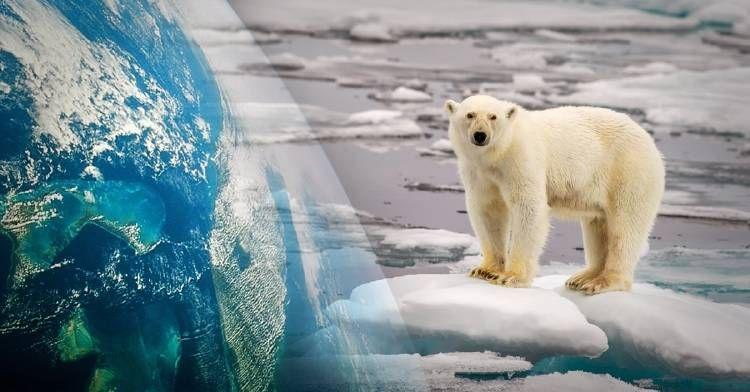 Portada Calentamiento Global Calentamiento Consecuencias Del Cambio Climatico