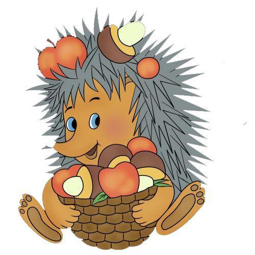 Pin Auf Hedgehogs