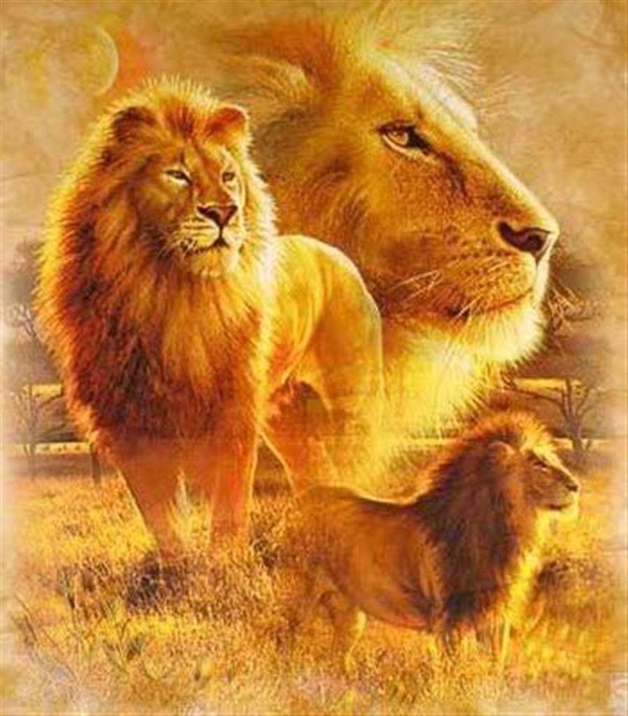 El León símbolo de autoridad y poder para conquistar, las puertas de ...