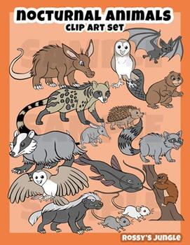 Nocturnal Animals Clip Art Set Clip Art Nocturnal Animals Art Set