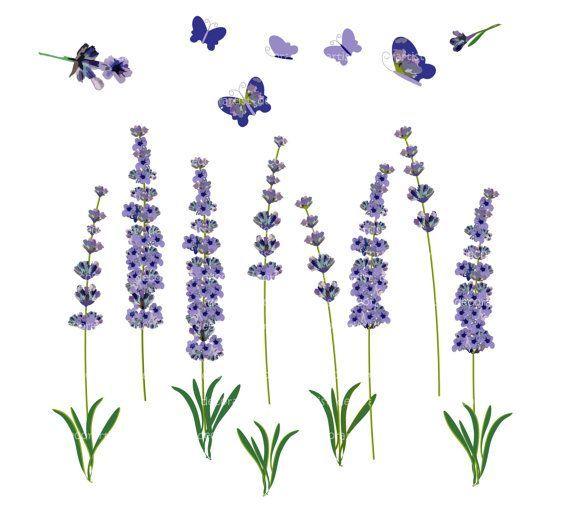Best Lavender Clipart 24250