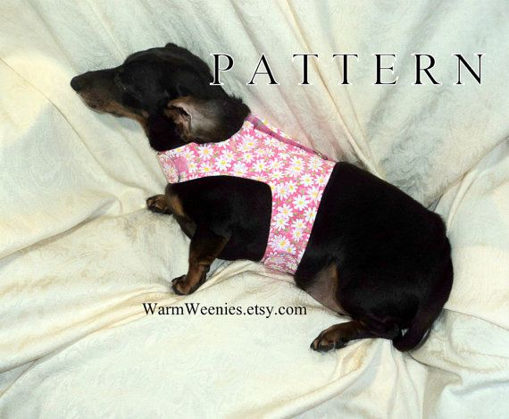 Dachshund Harness Sewing Pattern With Leash Instructions By