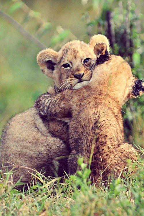 *love and hugs*