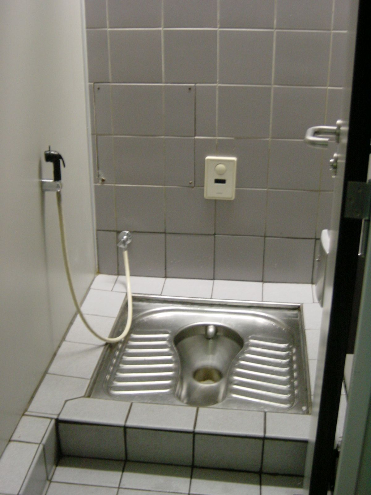 12 Toilet Oddities Around The World That Surprise Japan With