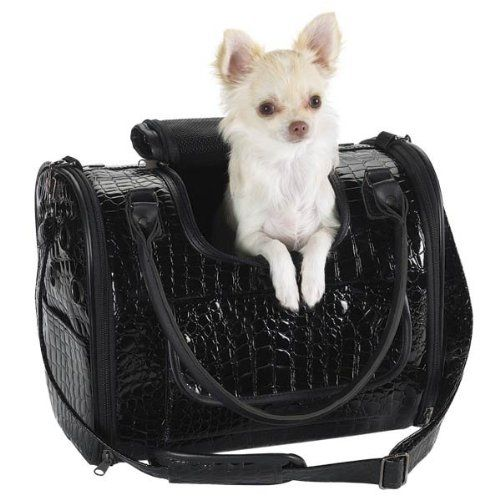 Pin By Jessica Pohl On My Puppy Pets Designer Dog Carriers Pet