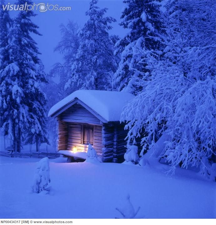 Cottage Surrounded By Snow Covered Trees Snow Covered Trees Cottage Beautiful Cabins