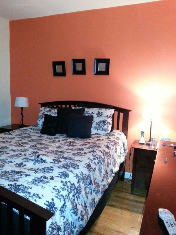 My coral accent wall bedroom painting the house coral - Coral paint color for living room ...