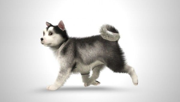 sims 3 pets demo free download
