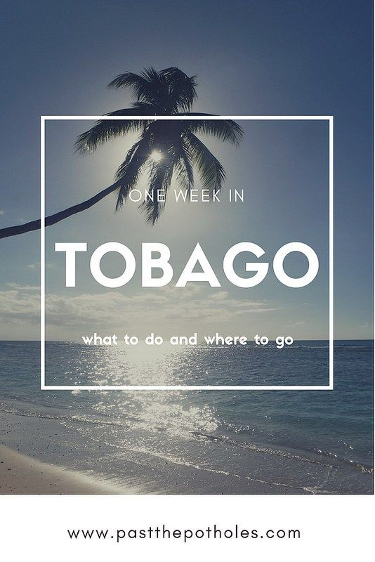 tobago one week itinerary what to do where to go island rh pinterest com