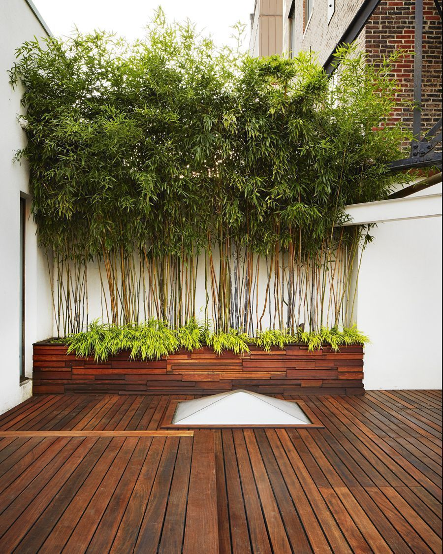 Bamboo Aesthetic In Pots 12 Graceful Roofing Ideas Urban Landscaping In 2020 Urban Garden Design Bamboo In Pots Garden Architecture