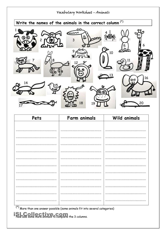 Vocabulary Worksheet Animals School Pinterest