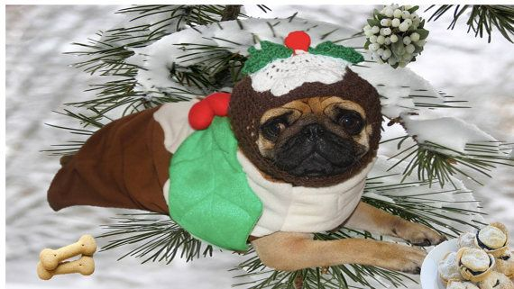 Christmas Pudding Dog Hat Snood For Small By Dinkydoocrochet