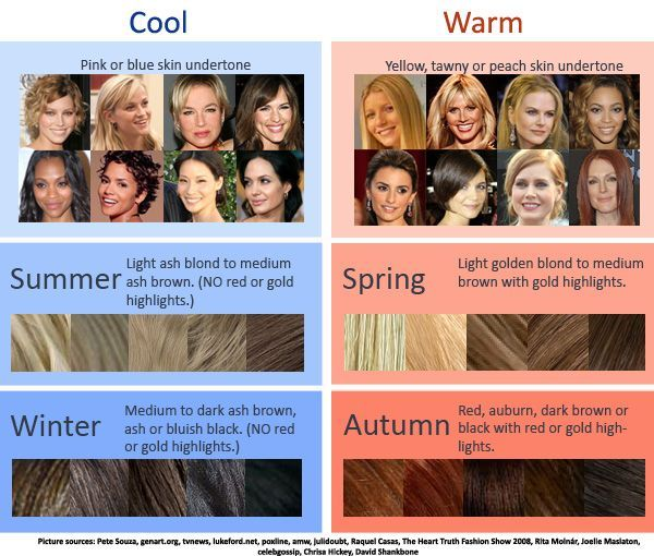 Cool Warm Hair Color Chart How To Determine Which Season You Fall Into Skin Tone Hair Color Warm Hair Color Hair Colour For Green Eyes