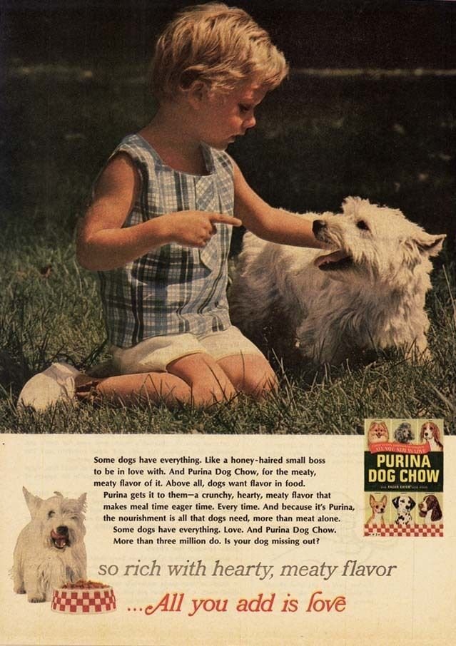 1959 Ad Purina Dog Chow Food West Highland Terrier And Child