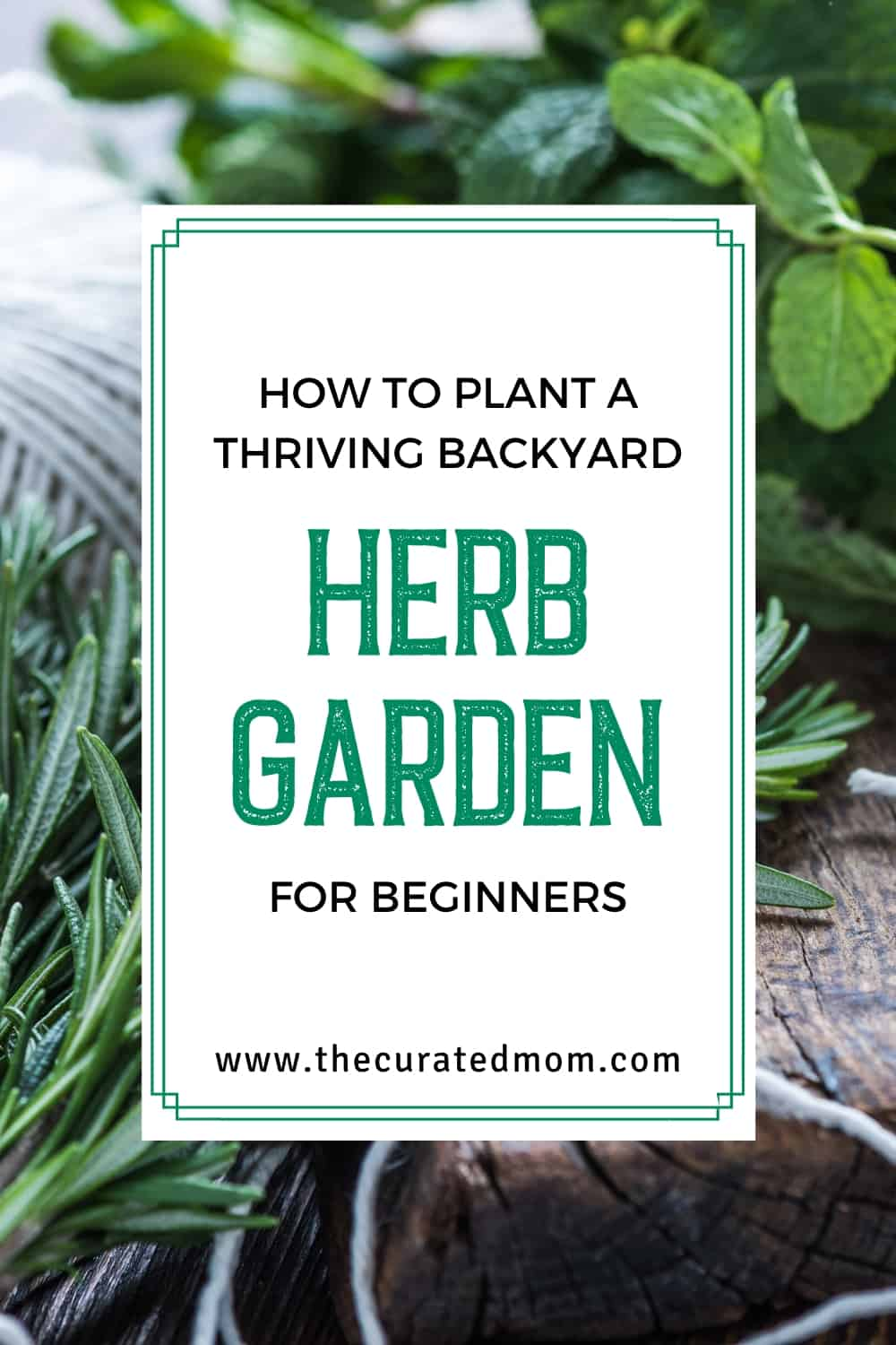 How to Plant a Thriving Backyard Herb Garden for Beginners ...