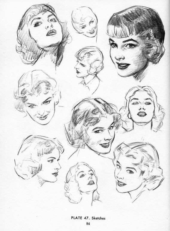Sketches Of The Female Head This Site Appears To Have The Entire