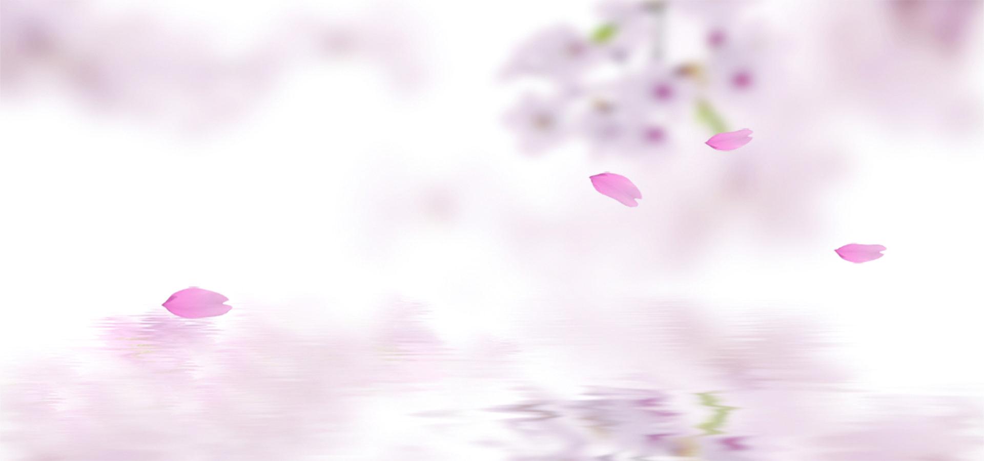 وردي زهرة ربيع نبات الخلفية Pink Posters Plant Background Floral Background