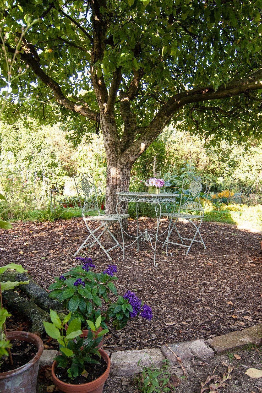 Wie bekommt mein Garten Struktur   Gartenräume schaffen hofideen ...