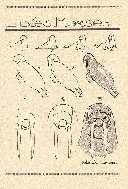 les animaux 78 | Dibujar, Consejos de dibujo y Diseños de letras