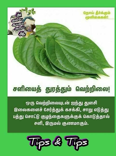 Cough remedies for baby in tamil