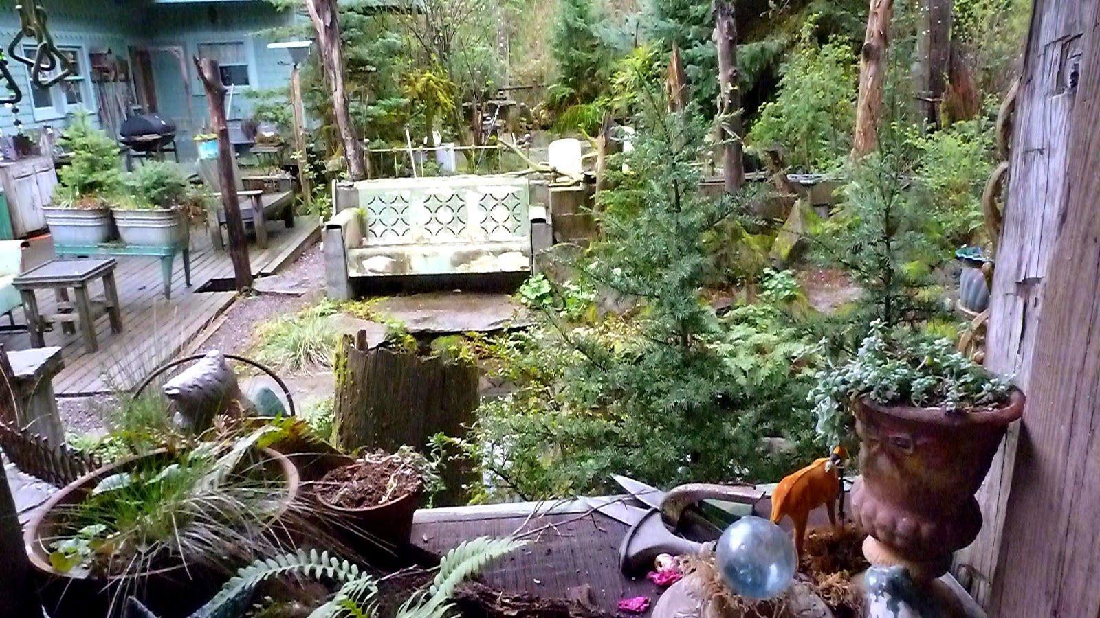 bosky+dell+back+porch.jpg 1,600×900 pixels   Habitat ...