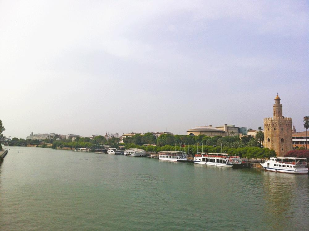 Le Guadalquivir, un fleuve plein de vie à #Séville
