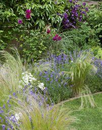 Lauren and Graeme's garden