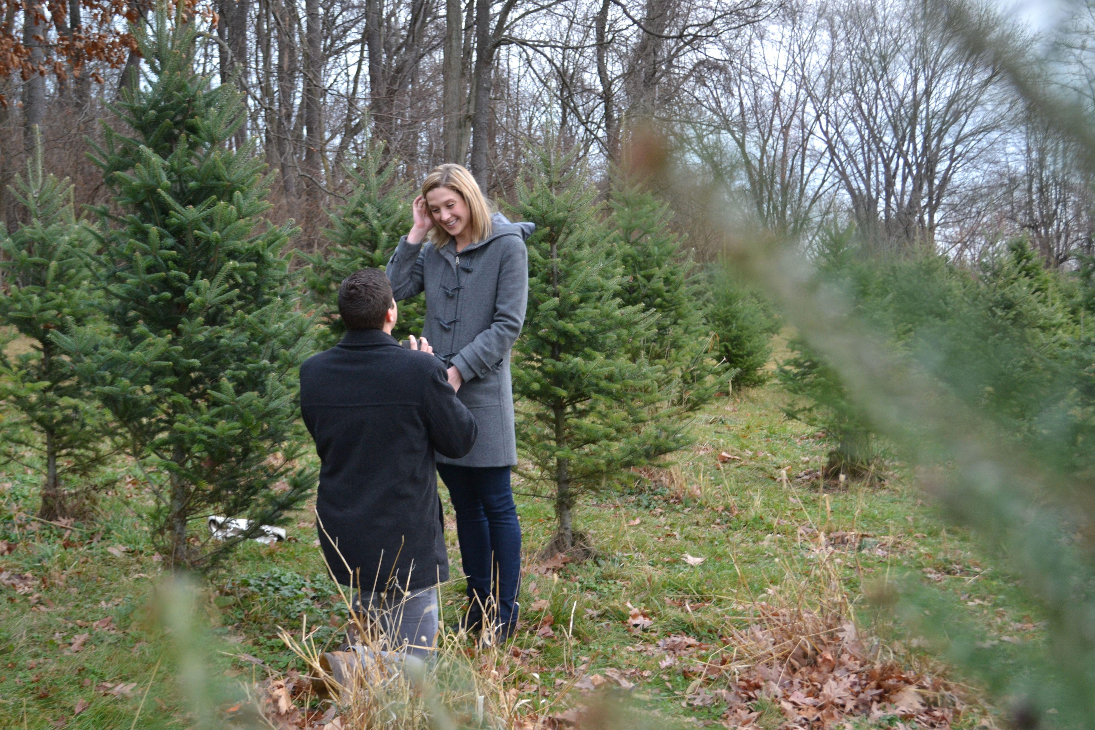 Weihnachtsbaumfarm Vorschlag! Weitere Ideen hier: www.senatehouseev …   – Christmas Wedding Proposals