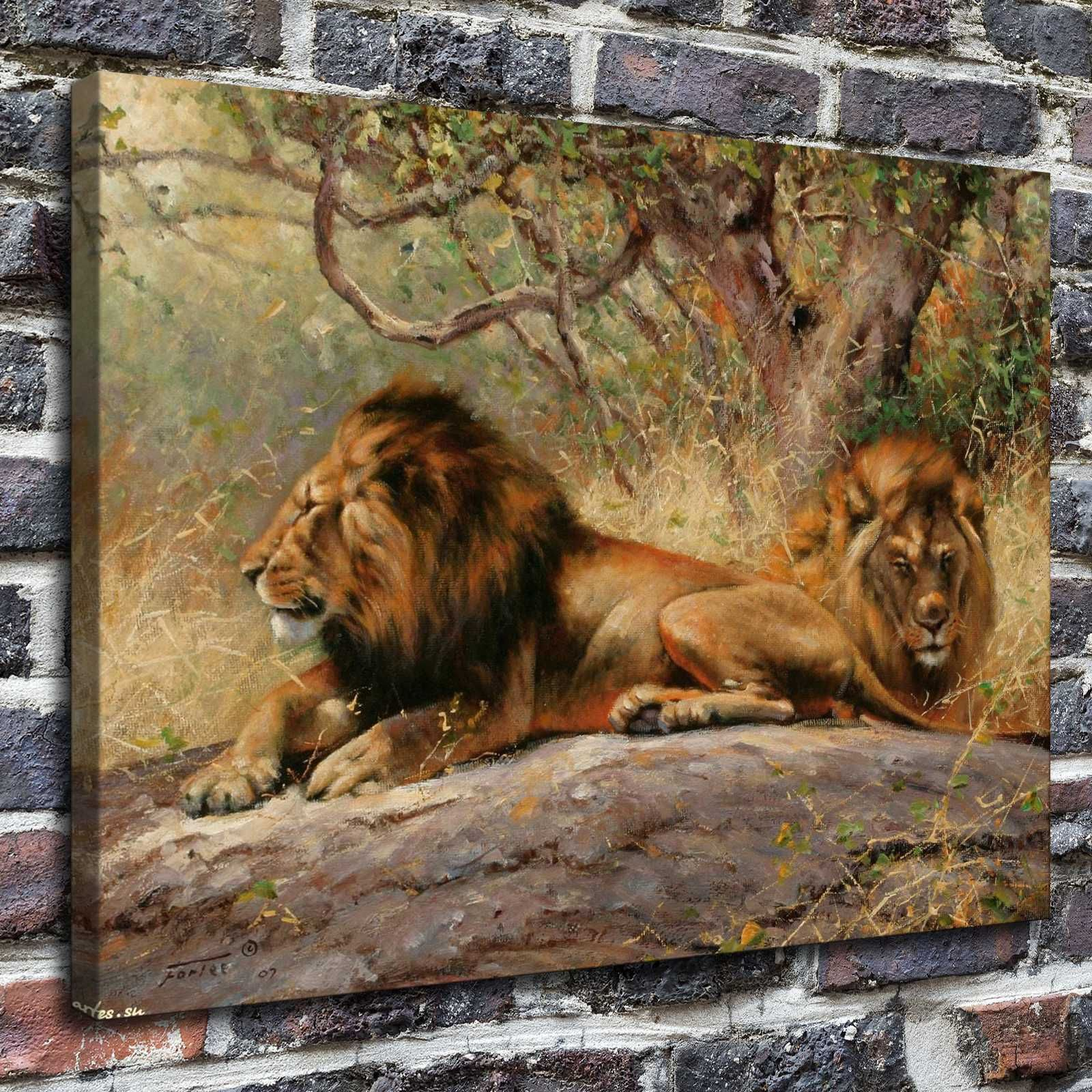 12x16african lions paintings hd print on canvas home