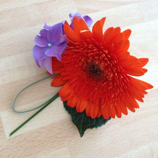 Orange gerbera & purple hydrangea buttonhole By Shelley Whiting The Flower Cafe Plymouth, Devon UK