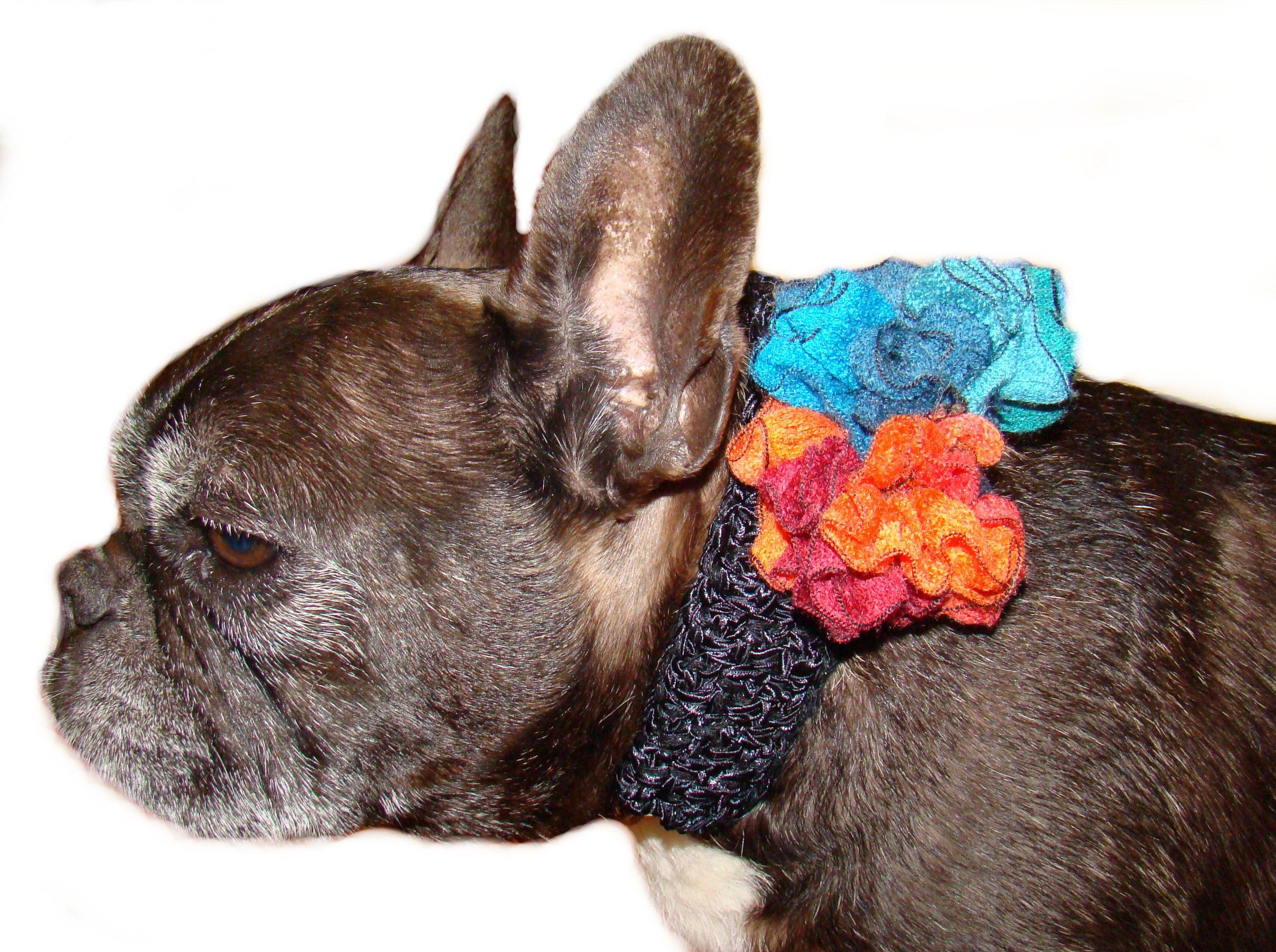 flower dog collar cover by Ilse Leader