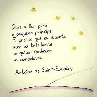 Antoine De Saint Exupéry O Pequeno Príncipe Frases