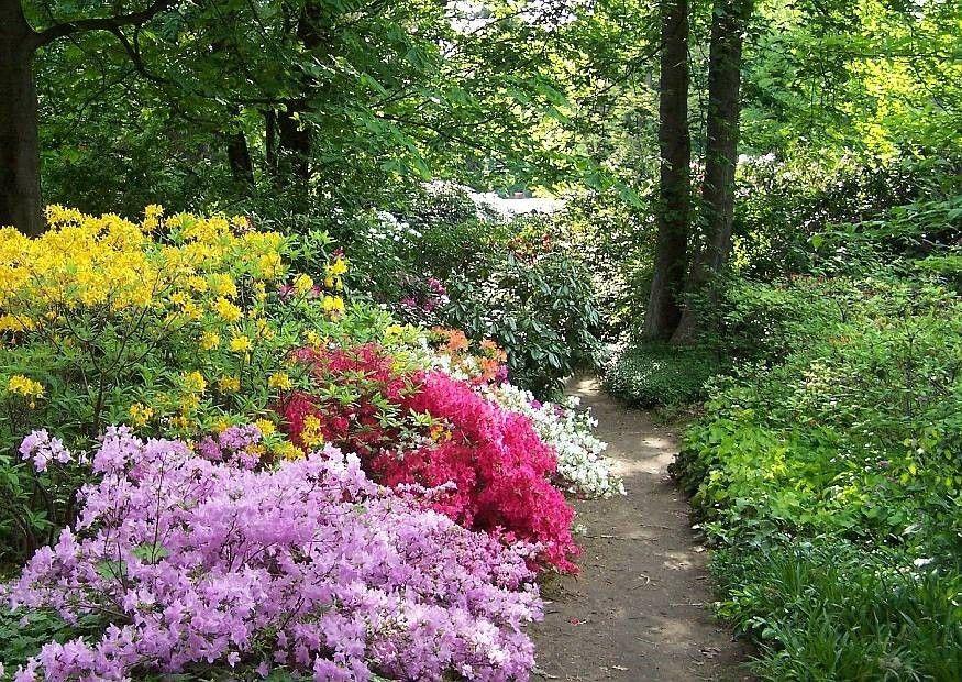 Romantische Gärten | Romantische Gärten Gestalten - Kunstrasen