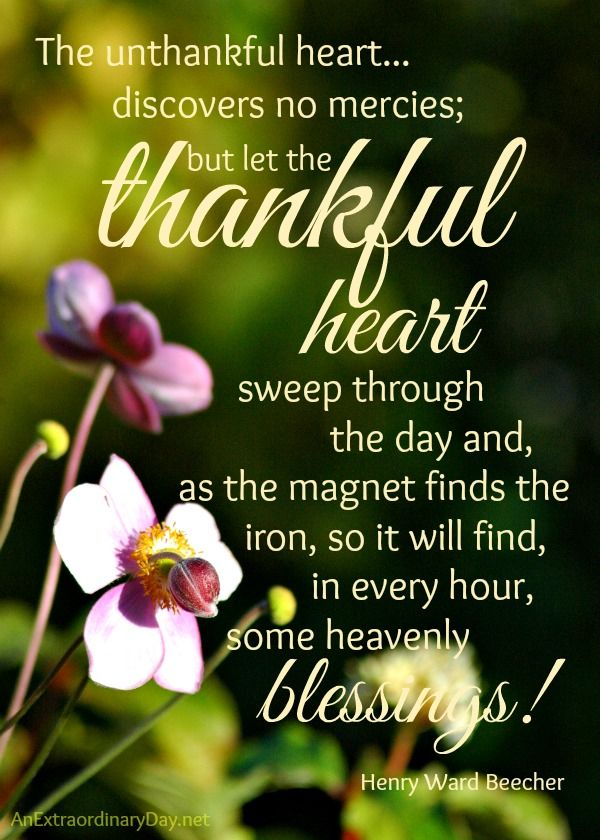 Thankful Thursday Thankful Heart Quote And Printable Aed