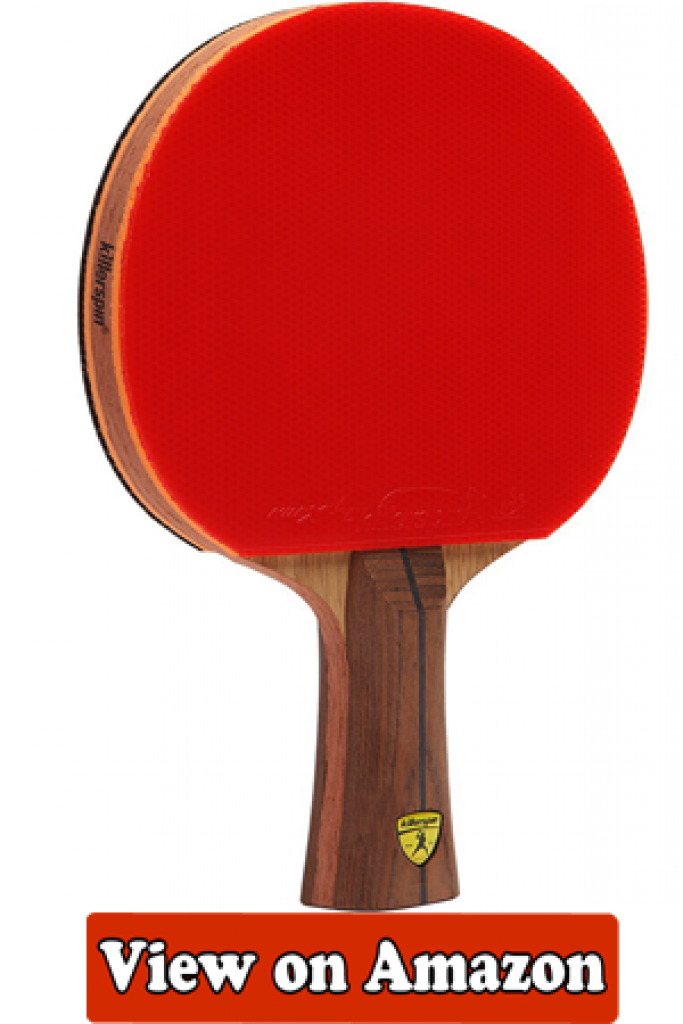 Best Ping Pong Paddle Buyer S Guide Ping Pong Paddles Paddle