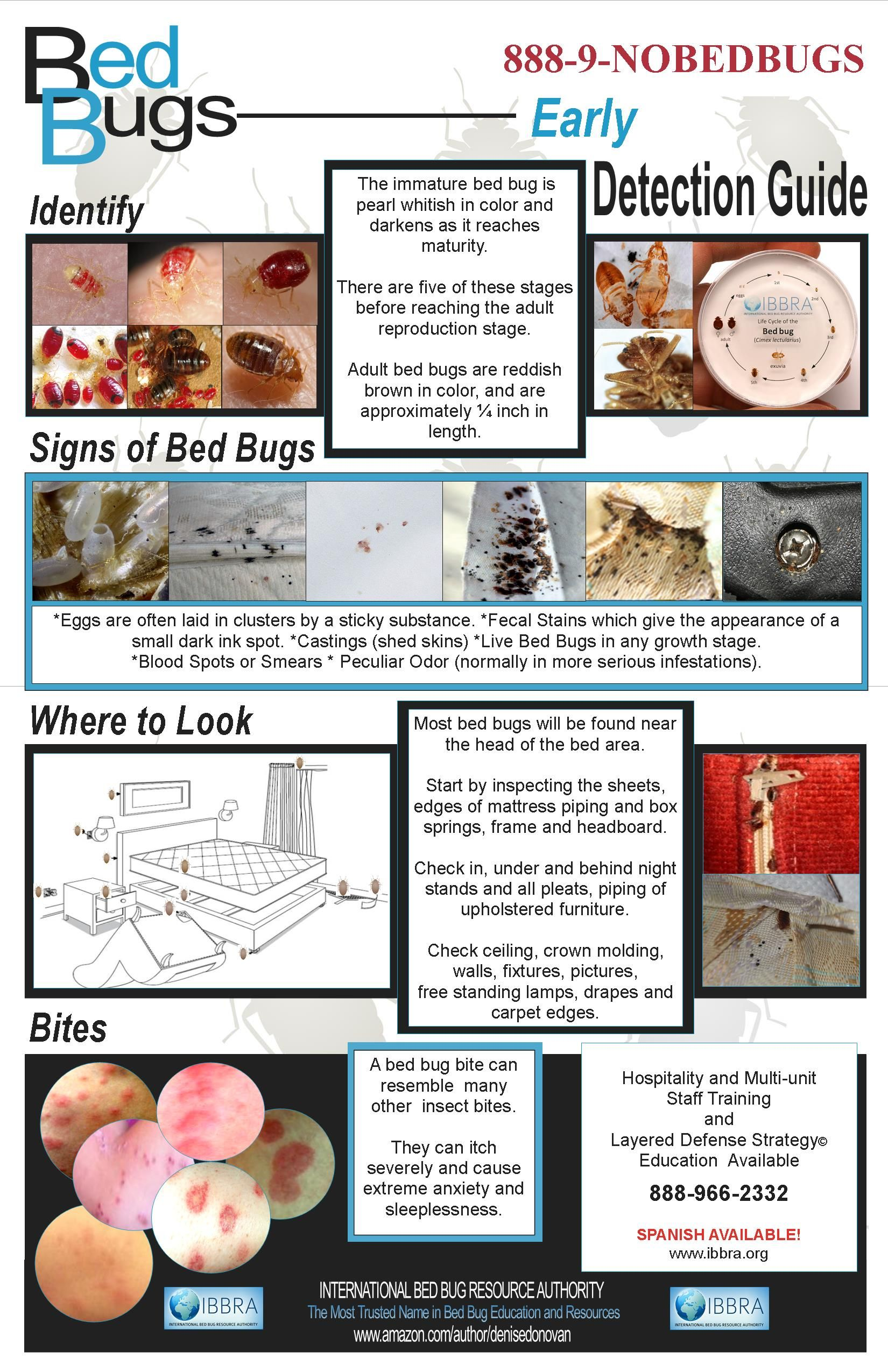 EARLY DETECTION BED BUG POSTER Bed bugs, Signs of bed
