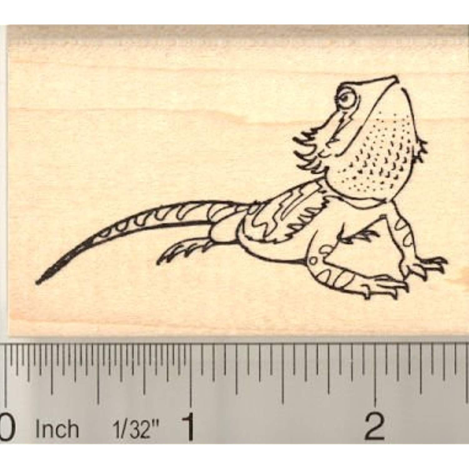 Bearded Dragon Rubber Stamp Gt Gt Gt Click Image For More